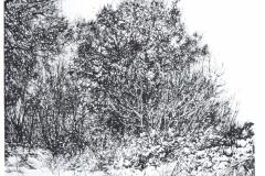 GRANDI-LABIRINTI-003